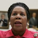 "WASHINGTON - MARCH 20: U.S. Rep. Sheila Jackson-Lee (D-TX) testifies during a hearing before the House Foreign Affairs Committee March 20, 2007 on Capitol Hill in Washington, DC. The hearing was focused on ""Proposed Legislation on Iraq."" (Photo by Alex Wong/Getty Images) *** Local Caption *** Sheila Jackson-Lee"